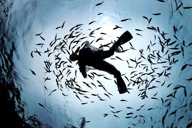 画报《诗词海洋》图