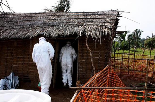 深度:埃博拉会随飞机传遍全球吗